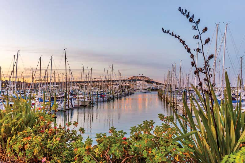 Whitehaven Marina, Auckland