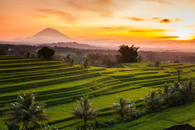 Mount Batukaru behind the famous Bali sunset