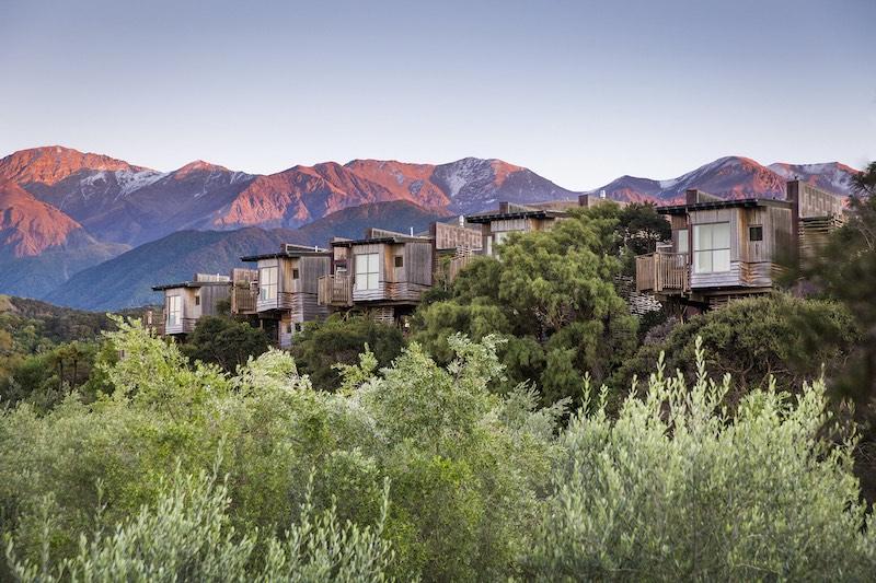 The Tree Houses at Hapuku Lodge