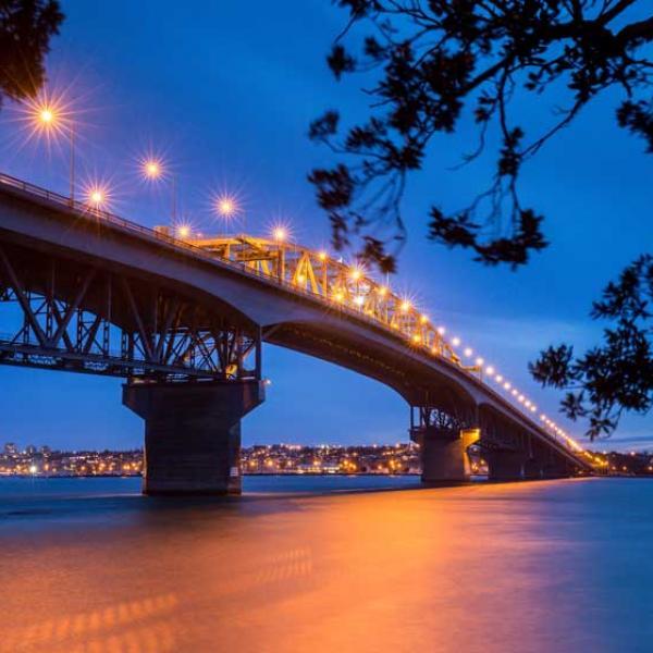 Auckland city from Mt. Eden